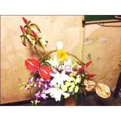 Aeroplane Garden Bouquet